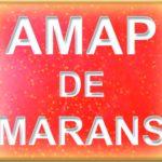 logo AMAP Marans