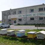 Les ruchers de Cybèle
