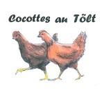 Cocottes et Tôlt