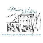 Vin Le Plantis des Vallée